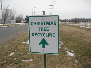 xmas tree recycling